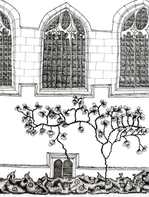 Oxbridge Théâtre Virginia Woolf Une Chambre à soi compagnie l'Instant-Même dessins scénographie Essi Esther Berelowitsch